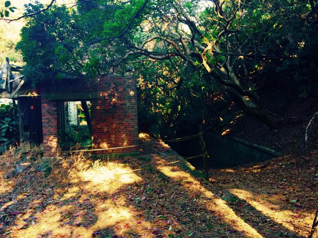 ラピュタの島 友ヶ島 第4砲台跡周辺