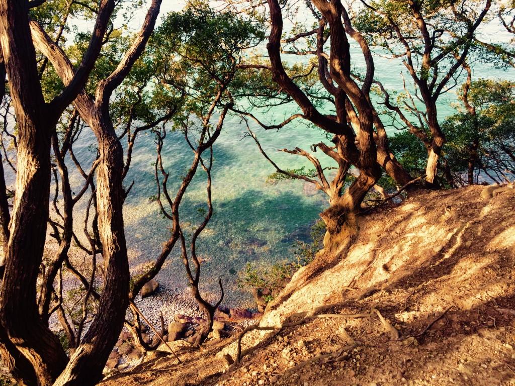 ラピュタの島 友ヶ島 ラピュタの世界