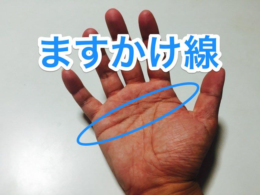 2. 天下取りの手相とも呼ばれる『ますかけ線』