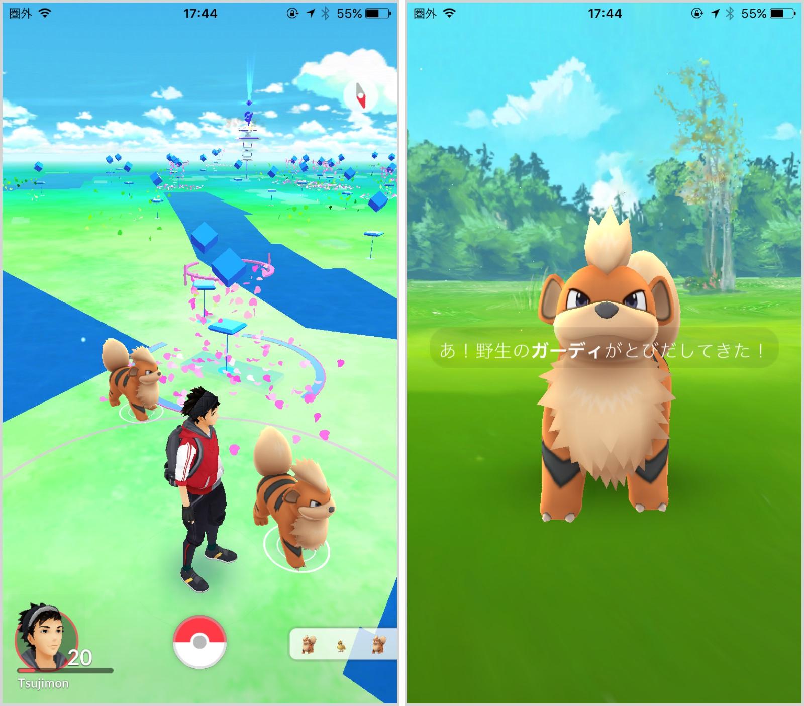 ポケモンgo攻略】大阪城公園はガーディの巣だった!進化させて最強のほ